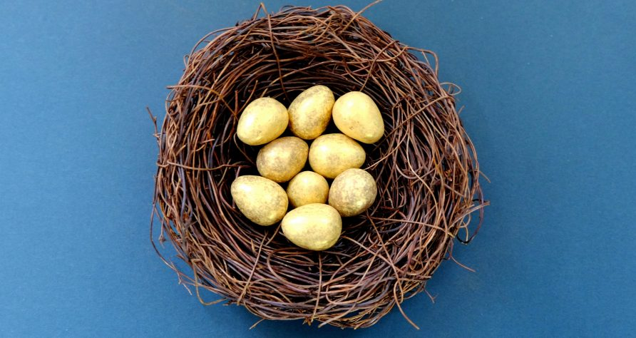 SMSF eggs in one basket